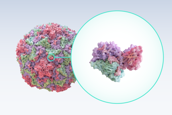 https://assets.exxactcorp.com/img/exx/cms/solutions/storage/ddn/use-molecular-dynamics.png